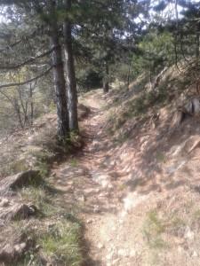 Sentiero verso il Colle di Pre